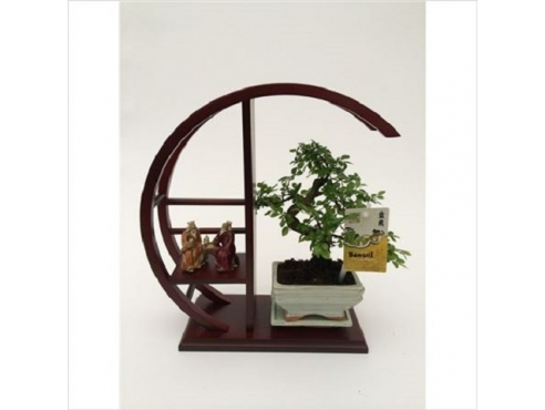 Бонсаи Скульптура Bonsai Wooden Sculp