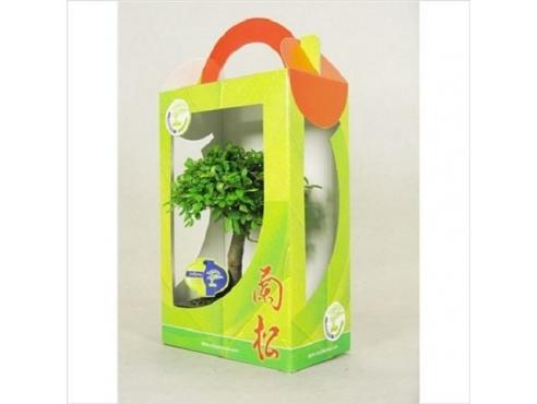 Бонсаи микс в подарочной коробке Bonsai Mix In Gift Box