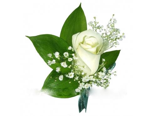Свадебная бутоньерка из розы с гипсофилой