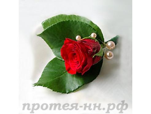 Бутоньерка жениха с розой и зеленью